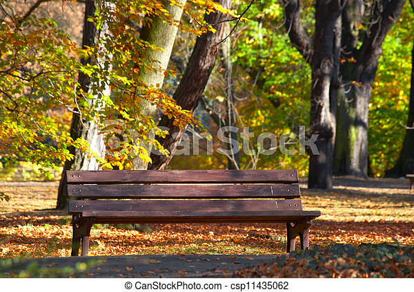 Bench in the park - csp11435062