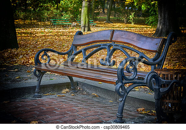 Bench in the park - csp30809465