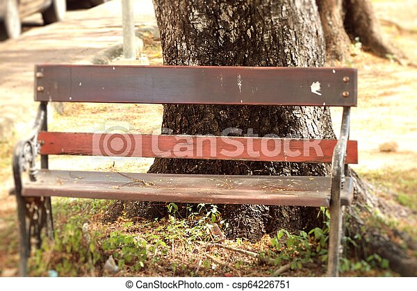 Bench in the park - csp64226751
