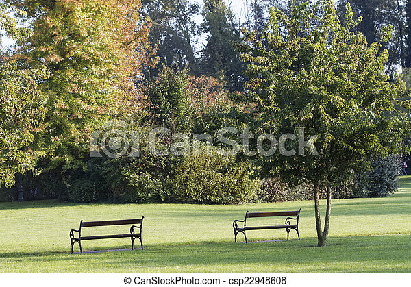 bench in the park - csp22948608