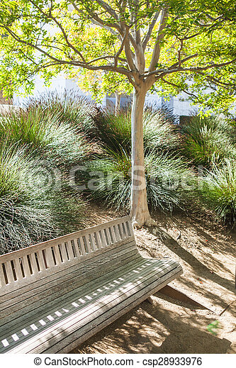 Bench under the young tree is in a sunny green park - csp28933976