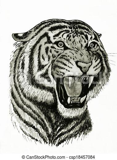bengal tiger face - csp18457084