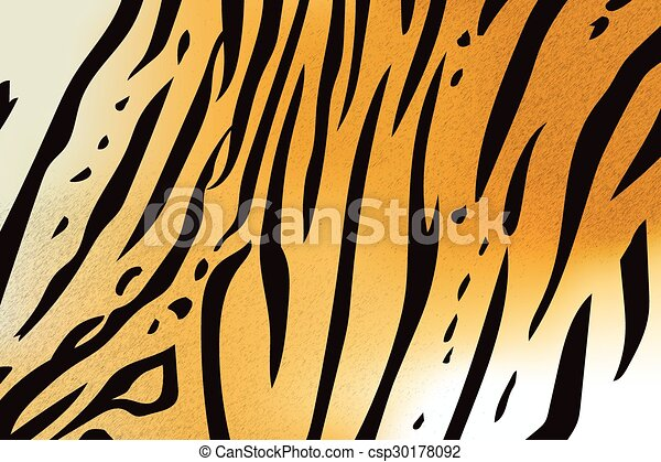 bengal tiger stripe pattern - csp30178092