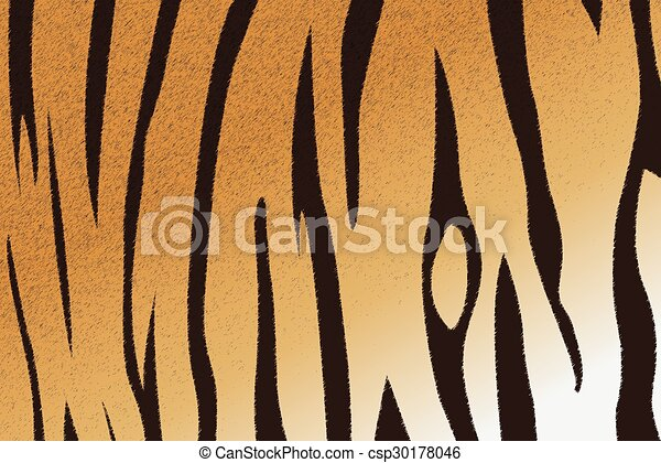 bengal tiger stripe pattern - csp30178046