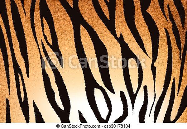 bengal tiger stripe pattern - csp30178104