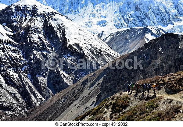 berg, groep, backpacking, bergen, himalayas, trekkers - csp14312032
