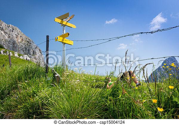berg, wandelende, relaxen, groene, meisje, weide - csp15004124