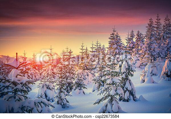 berg, winter, farbenfreudiger sonnenaufgang, landschaftsbild, wald - csp22673584