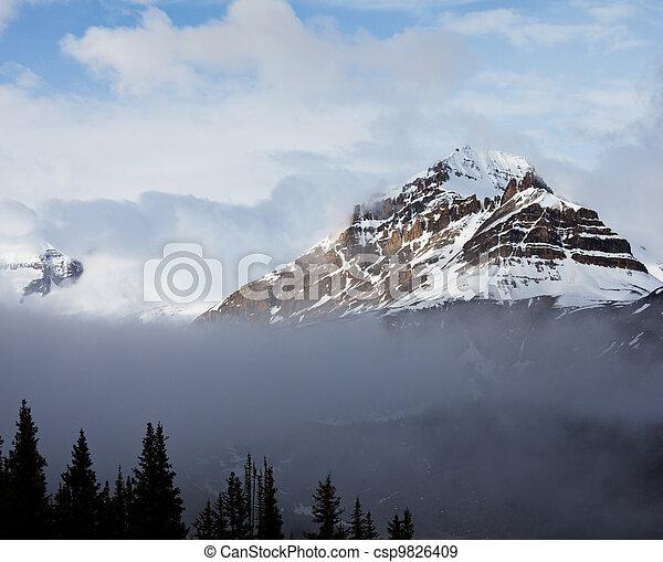 bergen, canadees - csp9826409