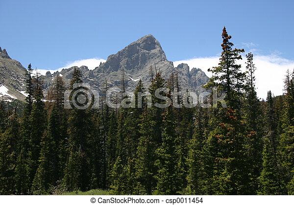 bergen, rotsachtig - csp0011454