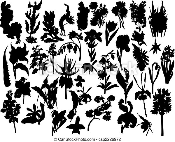Line Drawing Flower Vector : Berries and flowers silhouettes. collection of different vector