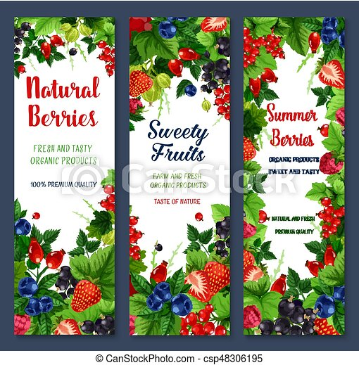 Berries and sweet fruits vector banners set - csp48306195
