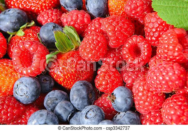 Berry Closeup - csp3342737