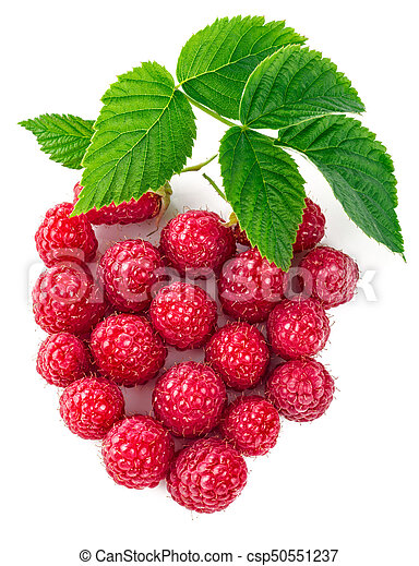 Berry raspberry top view green leaf creative - csp50551237