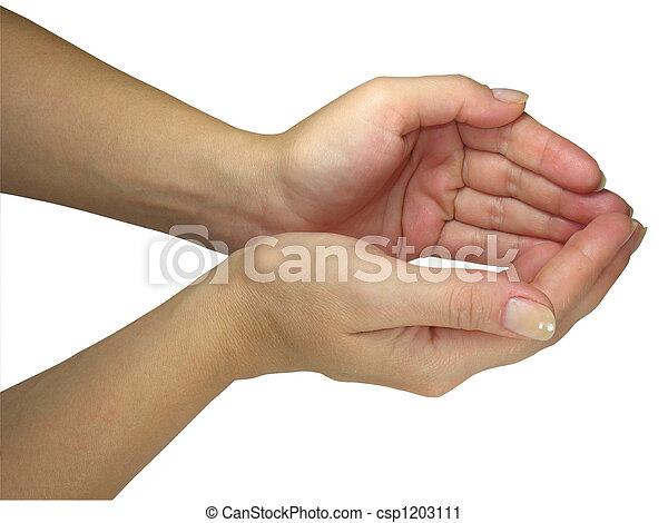 Menschliche Frauenhände halten Ihr Objekt isoliert über weiß - csp1203111
