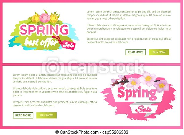 Best Offer Spring Sale Advertisement Daisy Flowers - csp55206383