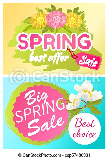 Best Offer Spring Sale Advertisement Daisy Flowers - csp57480331