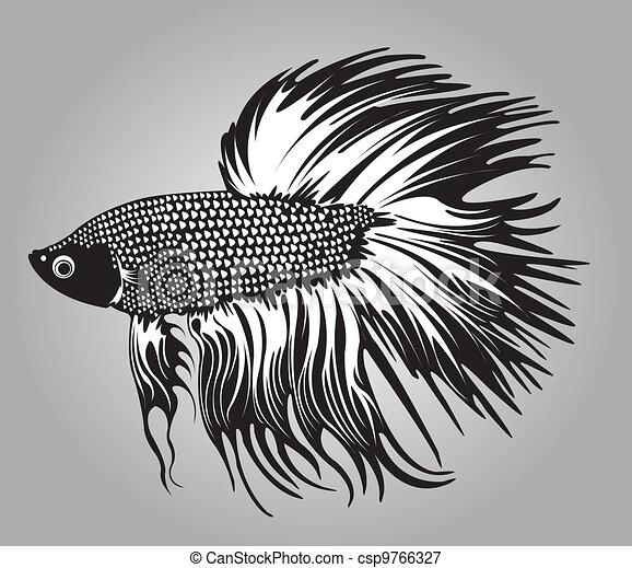 Beta fish. - csp9766327