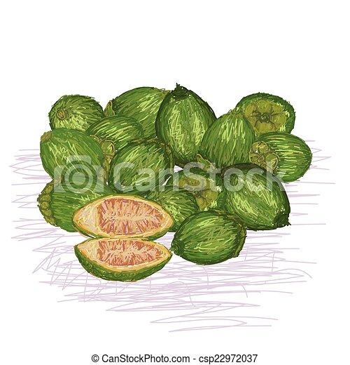 betel nut - csp22972037