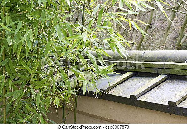 Betriebe Bambus Japanischer Garten Betriebe Gartenmauer