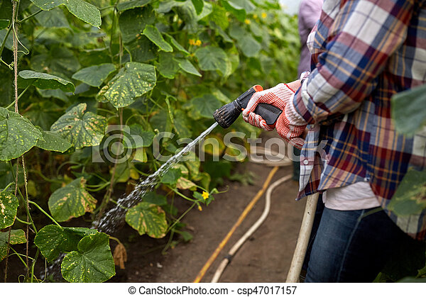 Bewasserung Saugschlauch Gewachshaus Kleingarten Landwirt
