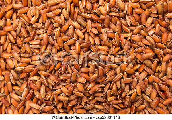 Bhutanese Red Rice seed. Closeup of grains, background use. - csp52601146