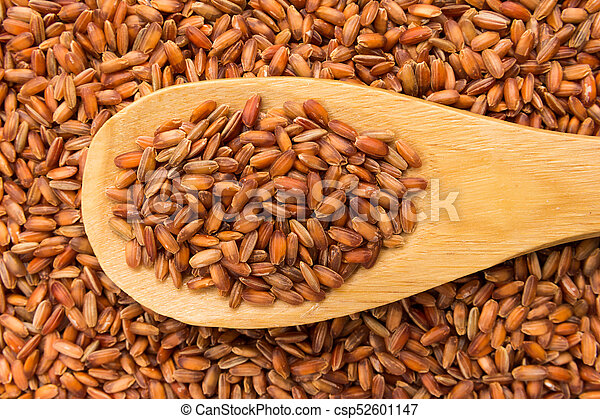 Bhutanese Red Rice seed. Grains in wooden spoon. Close up. - csp52601147