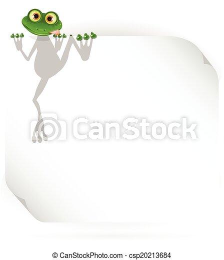 bianco, rana, fondo - csp20213684