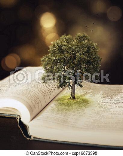 bible., 木 - csp16873398