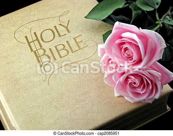 bible and roses - csp2085951