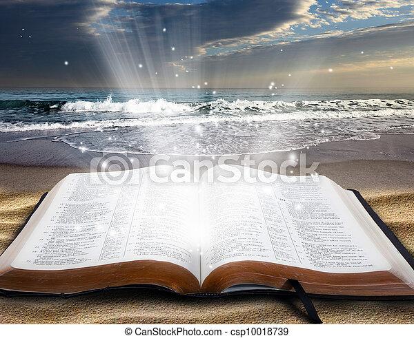 Bible at beach - csp10018739