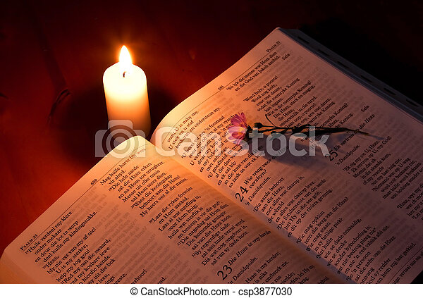 Bible by candle light on wooden table with small flower - csp3877030