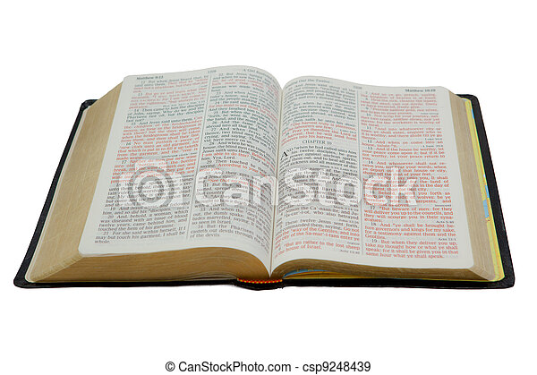 Bible Isolated on White - csp9248439