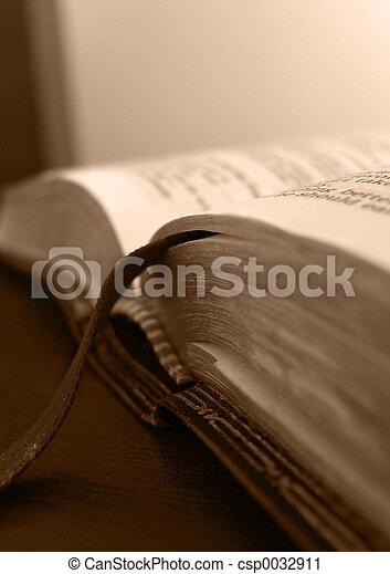 Bible - csp0032911