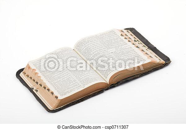 Bible - csp0711307