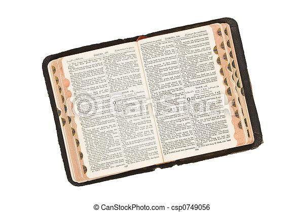 Bible - csp0749056