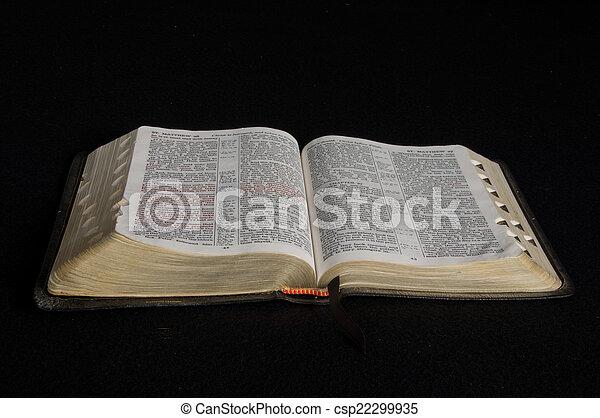Bible - csp22299935