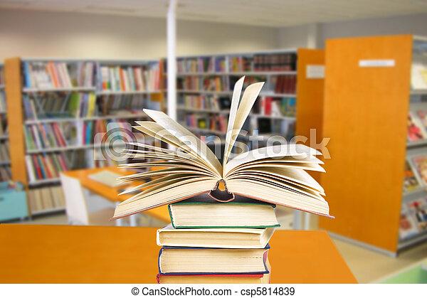 biblioteca - csp5814839