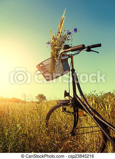 bicicleta, paisagem - csp23845216