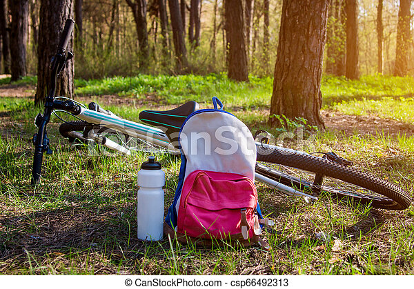 Bicycle and backpack in the forest. Tourism and traveling concept - csp66492313