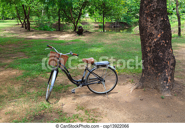 Bicycle in a park - csp13922066