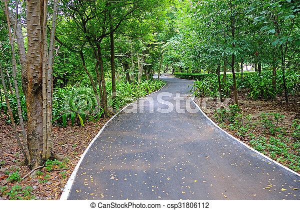 Bicycle Lane in a park - csp31806112