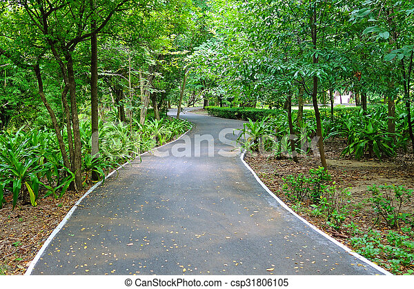 Bicycle Lane in a park - csp31806105