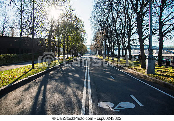 Bicycle lane road marks on asphalt road in the city park - csp60243822