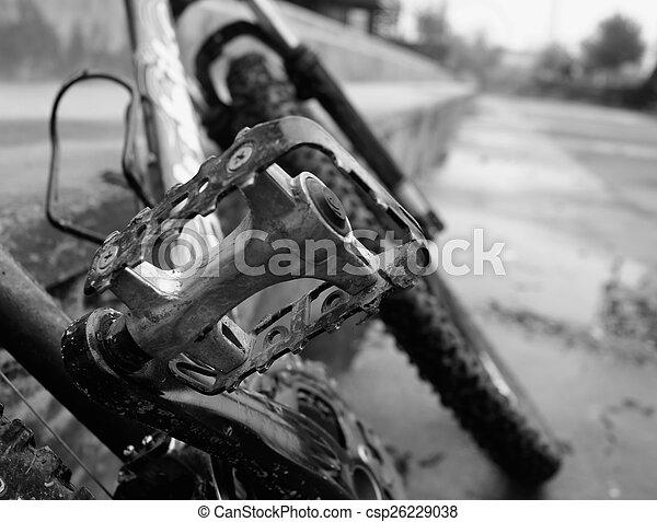 Bicycle pedal - csp26229038