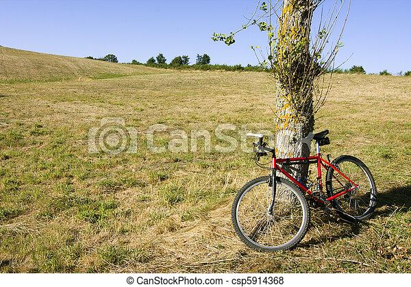 bicycle - csp5914368