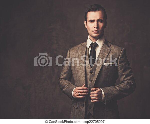 Hombre bien vestido con traje gris - csp22705207