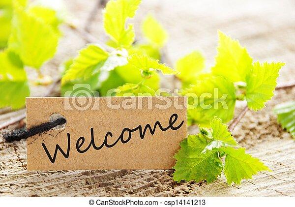 Etiqueta con bienvenida - csp14141213