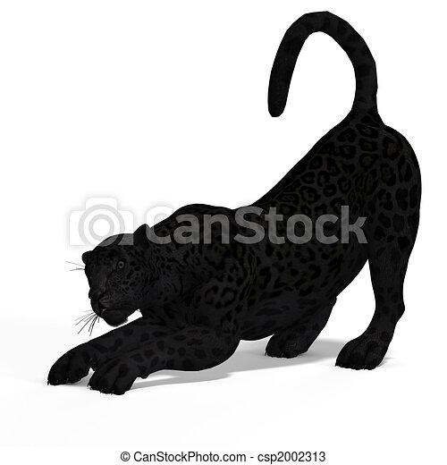big cat black jaguar dangerous big cat black jaguar with