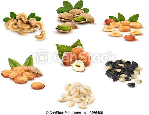 Big collection of ripe nuts  - csp9266406